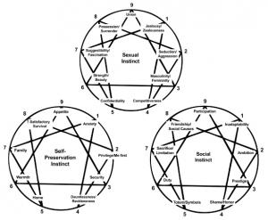 Instinctual Subtypes chart